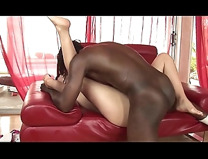 A Pretentiously black cock involving the botheration
